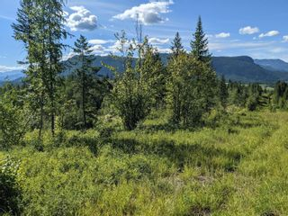 Photo 8: 455 Albers Road, in Lumby: Agriculture for sale : MLS®# 10235228