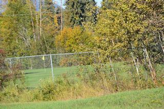 """Photo 4: 4567 ALFRED Crescent in Smithers: Smithers - Town House for sale in """"Wildwood"""" (Smithers And Area (Zone 54))  : MLS®# R2212533"""