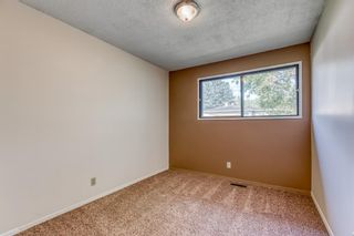 Photo 13: 5260 19 Avenue NW in Calgary: Montgomery Semi Detached for sale : MLS®# A1131869