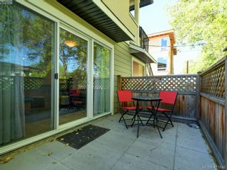 Photo 15: 1 1680 Ryan St in VICTORIA: Vi Oaklands Condo for sale (Victoria)  : MLS®# 816073