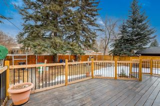 Photo 41: 28 Kelvin Place SW in Calgary: Kingsland Detached for sale : MLS®# A1079223