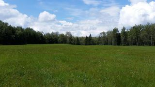 Photo 25: ON Highway 27: Rural Mountain View County Land for sale : MLS®# A1012349