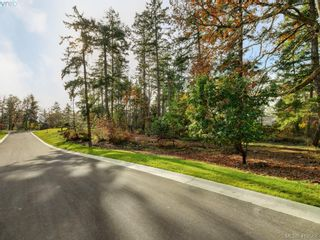 Photo 3: 581 Downey Rd in NORTH SAANICH: NS Deep Cove Land for sale (North Saanich)  : MLS®# 830478