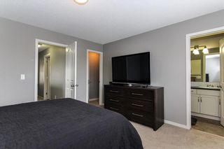 Photo 21: 444 CRANBERRY Circle SE in Calgary: Cranston House for sale : MLS®# C4139155