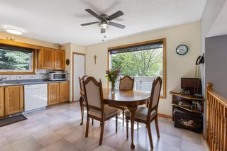 Photo 20: 31 Mchugh Place NE in Calgary: Mayland Heights Detached for sale : MLS®# A1111155
