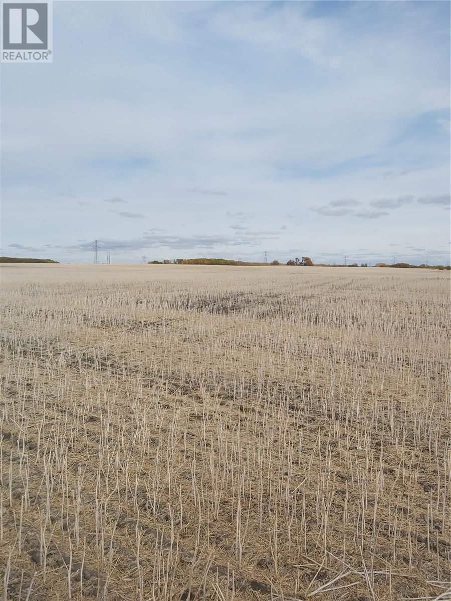Main Photo: Rystrom Farm in Corman Park Rm No. 344: Agriculture for sale : MLS®# SK828530