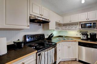 Photo 8: 131 11325 83 Street in Edmonton: Zone 05 Condo for sale : MLS®# E4259176