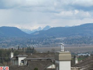 Photo 10: 31425 RIDGEVIEW Drive in Abbotsford: Abbotsford West House for sale : MLS®# F1110640