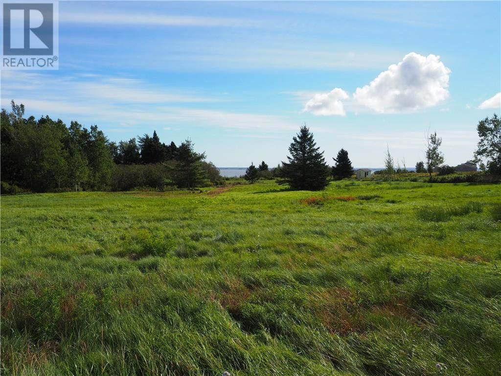 Main Photo: Lot Route 935 in Wood Point: Vacant Land for sale : MLS®# M132789