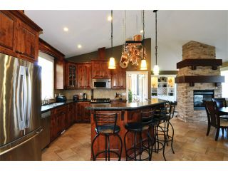"""Photo 3: 11387 240A ST in Maple Ridge: East Central House for sale in """"SEIGLE CREEK ESTATES"""" : MLS®# V1016175"""