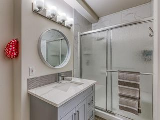 Photo 38: 226 Coral Shores Landing NE in Calgary: Coral Springs Detached for sale : MLS®# A1107142