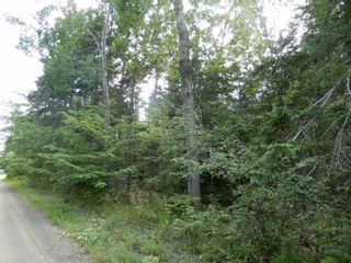 Photo 2: Pictou Landing Road in Pictou Landing: 108-Rural Pictou County Vacant Land for sale (Northern Region)  : MLS®# 202118664