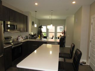 Photo 9: 17467 77 Street in Edmonton: Zone 28 House for sale : MLS®# E4257447
