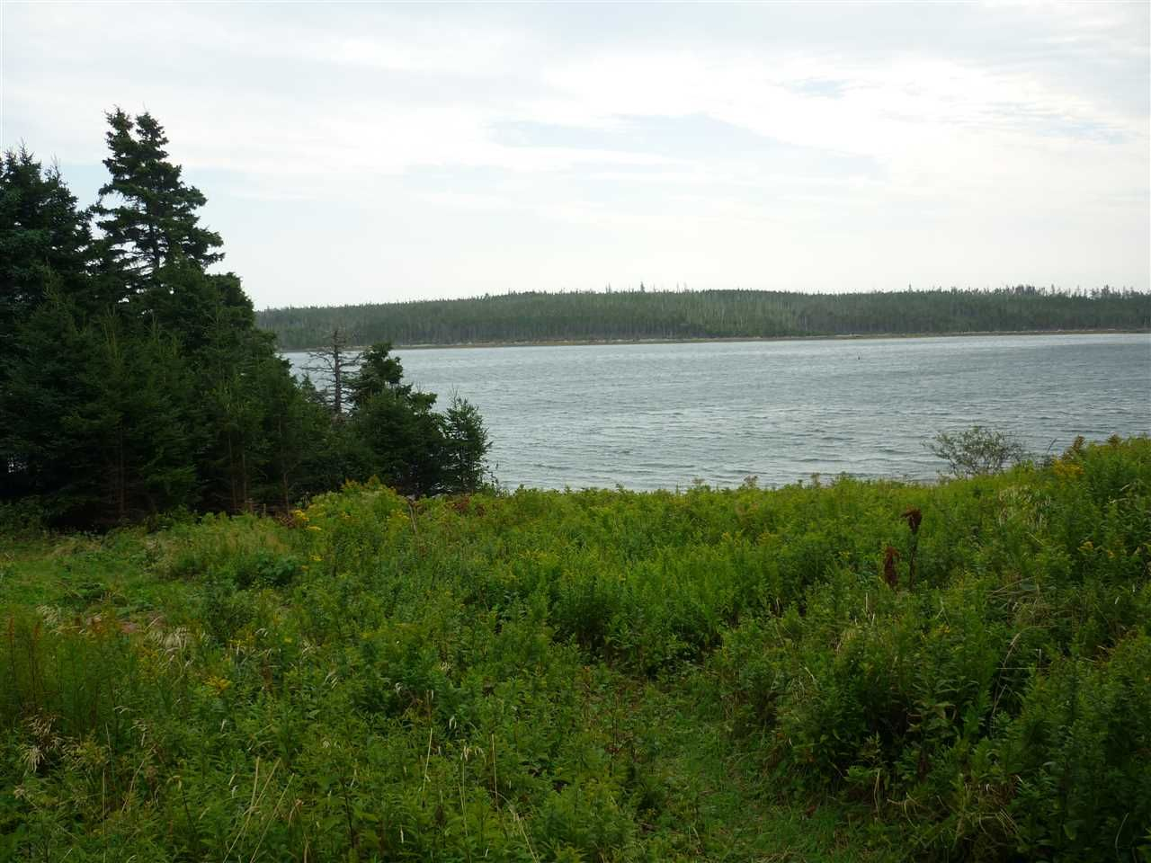 Main Photo: - Little Liscomb Road in Little Liscomb: 303-Guysborough County Vacant Land for sale (Highland Region)  : MLS®# 201728127