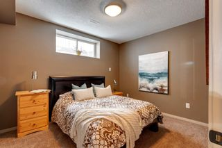 Photo 37: 92 COPPERPOND Mews SE in Calgary: Copperfield Detached for sale : MLS®# A1084015