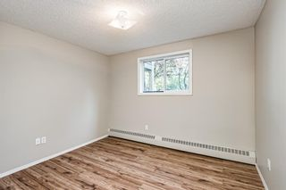 Photo 11: 103 11 Dover Point SE in Calgary: Dover Apartment for sale : MLS®# A1144552