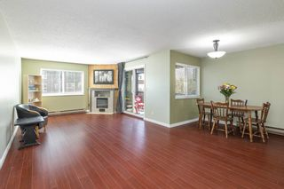 Photo 4: 202 2344 ATKINS Avenue in Port Coquitlam: Central Pt Coquitlam Condo for sale : MLS®# R2565721