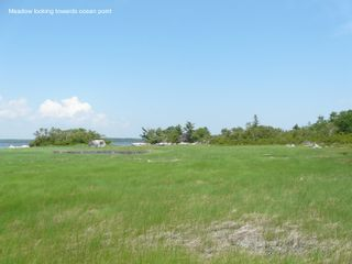 Photo 8: Lot 44 McLeans Lake Road in West Port L'Hebert: 407-Shelburne County Vacant Land for sale (South Shore)  : MLS®# 202106311