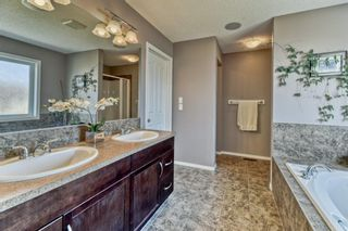 Photo 15: 7 SKYVIEW RANCH Crescent NE in Calgary: Skyview Ranch Detached for sale : MLS®# A1109473