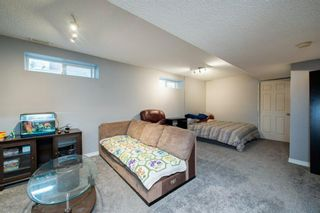 Photo 24: 26 Mt Aberdeen Link SE in Calgary: McKenzie Lake Detached for sale : MLS®# A1095540