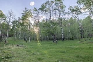 Photo 23: 231175 Bracken Road in Rural Rocky View County: Rural Rocky View MD Land for sale : MLS®# A1116621