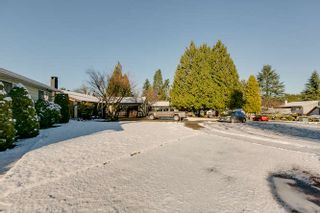 Photo 3: 21946 CLIFF Place in Maple Ridge: West Central House for sale : MLS®# R2229977