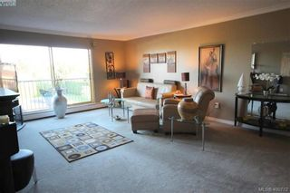 Photo 3: 226 3225 Eldon Pl in VICTORIA: SW Rudd Park Condo for sale (Saanich West)  : MLS®# 799568