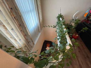 Photo 7: 8023 22 Avenue in Edmonton: Zone 53 House for sale : MLS®# E4265173