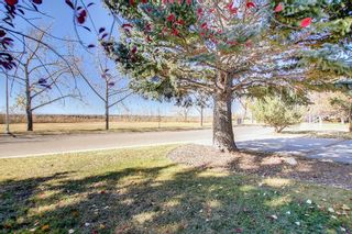 Photo 36: 14308 Parkside Drive SE in Calgary: Parkland Detached for sale : MLS®# A1144542