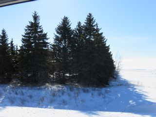 Photo 3: 0 Centreline Road: RM Springfield Vacant Land for sale (R04)  : MLS®# 202103923
