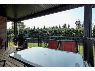 Photo 39: 24 Vermont Close: Olds House for sale : MLS®# C4027121