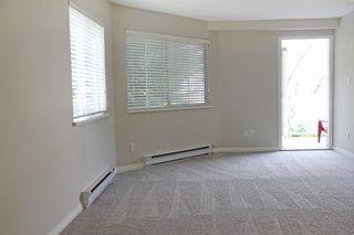 """Photo 9: 223 12101 80 Avenue in Surrey: Queen Mary Park Surrey Condo for sale in """"Surrey Town Manor"""" : MLS®# R2177547"""