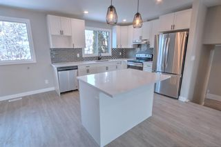 Photo 4: 547 Templeby Place NE in Calgary: Temple Detached for sale : MLS®# A1071164