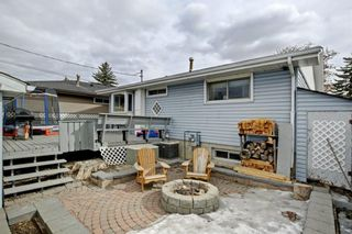 Photo 27: 3303 39 Street SE in Calgary: Dover Detached for sale : MLS®# A1084861