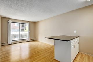 Photo 5: 107 835 19 Avenue SW in Calgary: Lower Mount Royal Condo for sale : MLS®# C4117697