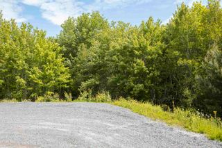 Photo 6: Lots St. Phillips Street in Bridgewater: 405-Lunenburg County Vacant Land for sale (South Shore)  : MLS®# 202115973