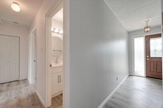 Photo 14: 10916 36A Avenue in Edmonton: Zone 16 House for sale : MLS®# E4246893