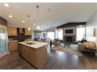 Photo 8: 11 Cotswold Place in Winnipeg: St Vital Residential for sale (South East Winnipeg)  : MLS®# 1606270