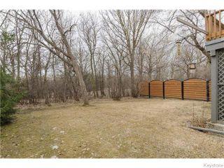 Photo 17: 88 Brahms Bay in Winnipeg: North Kildonan Residential for sale (North East Winnipeg)  : MLS®# 1607582