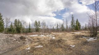 Photo 10: 2455 PARENT Road in Prince George: St. Lawrence Heights Land for sale (PG City South (Zone 74))  : MLS®# R2548505