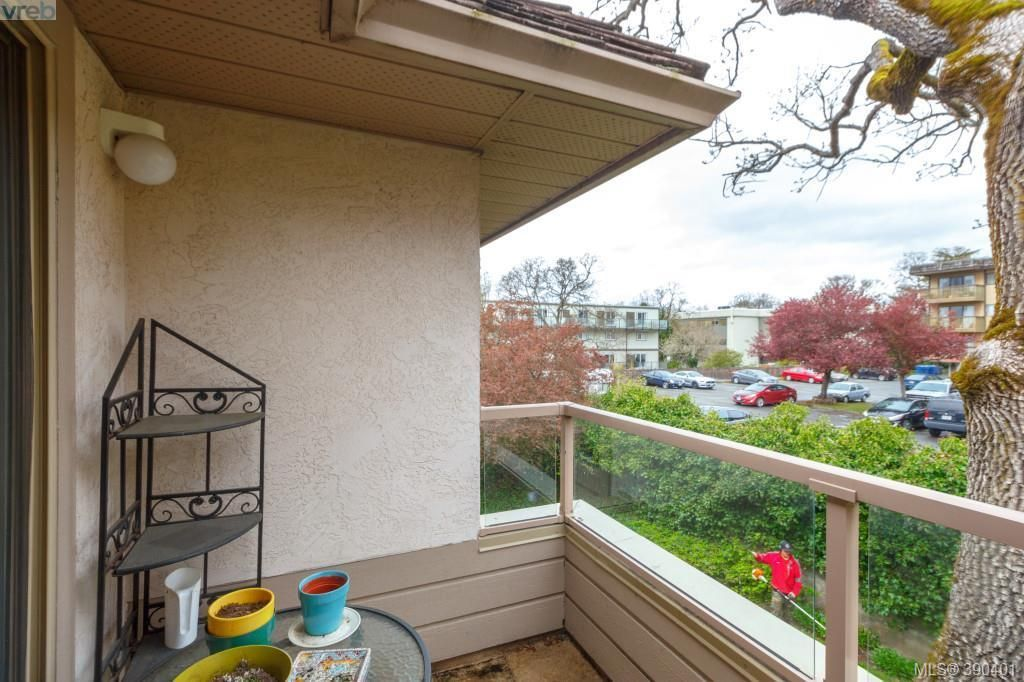 Photo 12: Photos: 306 3400 Quadra St in VICTORIA: SE Quadra Condo for sale (Saanich East)  : MLS®# 784665
