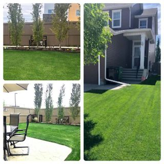 Photo 3: 99 Evanswood Circle NW in Calgary: Evanston Semi Detached for sale : MLS®# A1077715