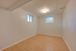 Photo 27: 12123 61 Street NW in Edmonton: House for sale : MLS®# E4166111