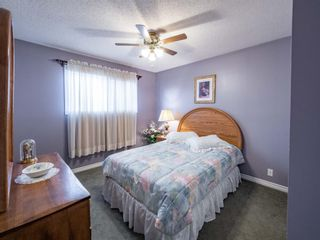 Photo 16: 223 Tanner Drive SE: Airdrie Detached for sale : MLS®# A1101335