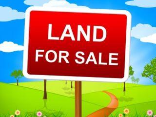 Photo 1: LT 1 E Ryan Rd in COMOX: CV Comox Peninsula Land for sale (Comox Valley)  : MLS®# 845339