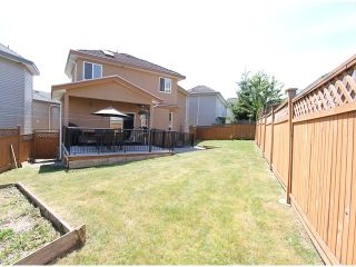 Photo 20: 8075 135A Street in Surrey: Queen Mary Park Surrey House for sale : MLS®# F1444482