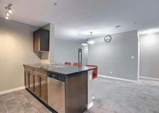 Photo 19: 1214 1317 27 Street SE in Calgary: Albert Park/Radisson Heights Apartment for sale : MLS®# A1142395