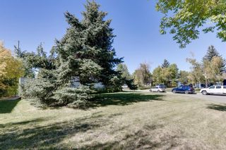 Photo 28: 1925 Green Ridge Road SW in Calgary: Glendale Detached for sale : MLS®# A1143834
