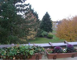 "Photo 1: 46 10200 4TH Avenue in Richmond: Steveston North Townhouse for sale in ""MANOAH VILLAGE"" : MLS®# V676801"