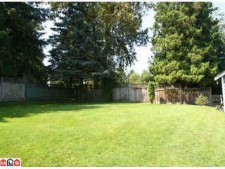 Photo 9: 4789 207A ST in Langley: Langley City House for sale : MLS®# F1215087